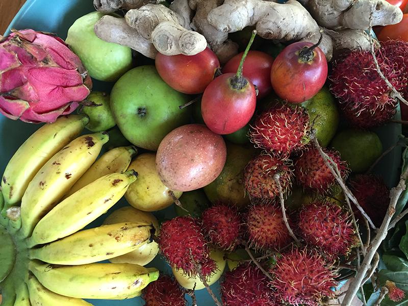 Bali-Fruit